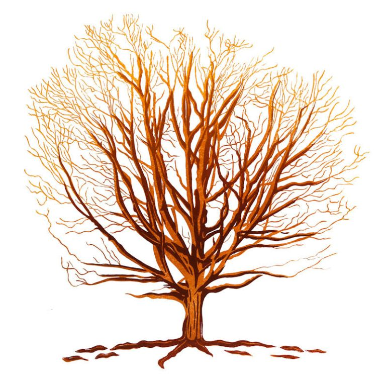 Local Worthing artist Wayne Longhurst makes lino prints, often inspired by local nature. This image is of a tree.
